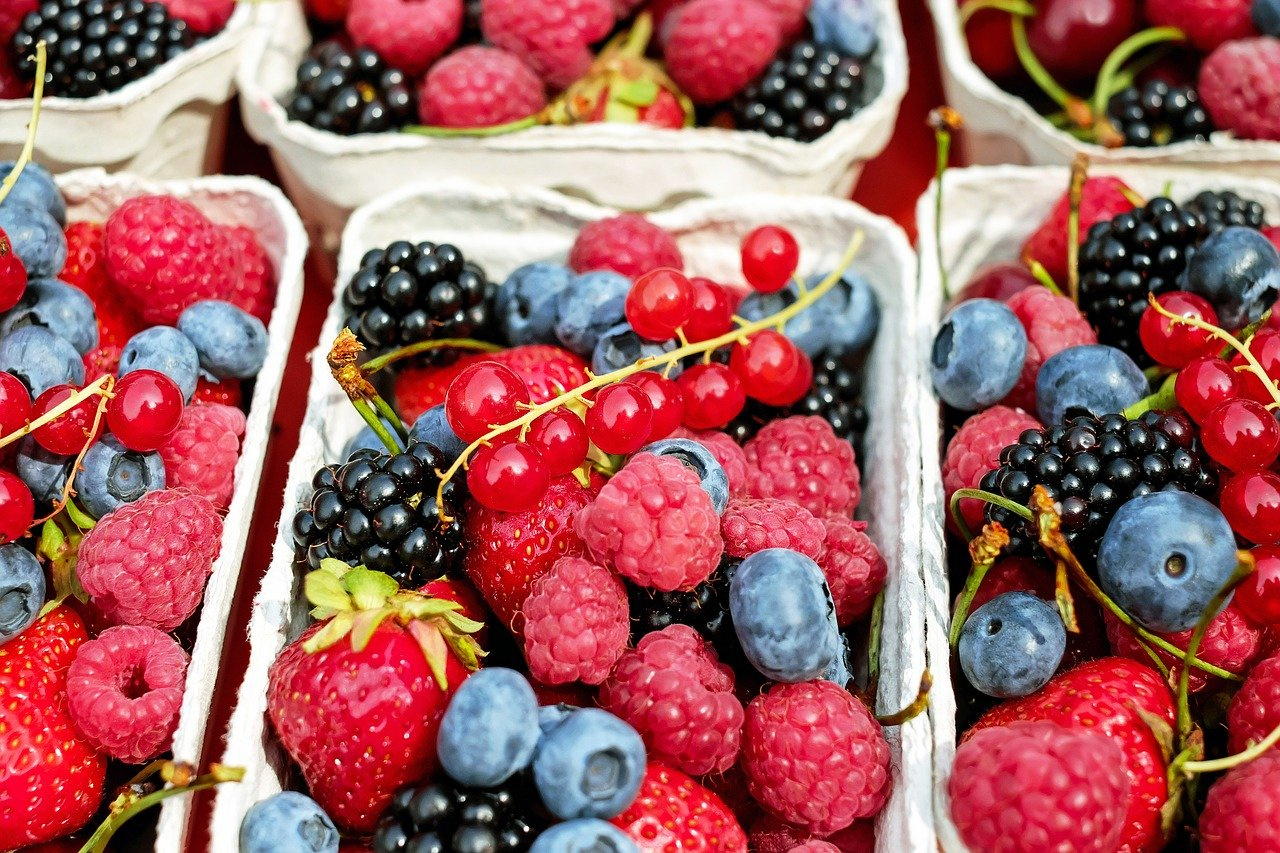 Antocyaner i bær