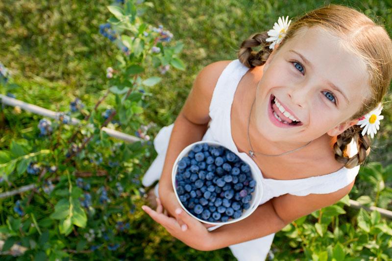 Karrusel-blåbær